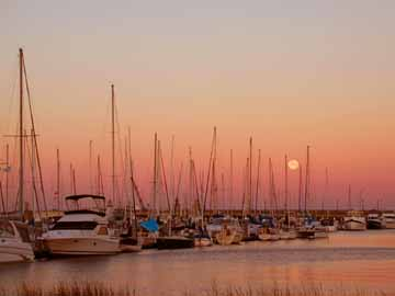 City Marina in Charleston
